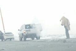 Полицейским требуется помощь очевидцев смертельного ДТП на трассе Норильск – Кайеркан