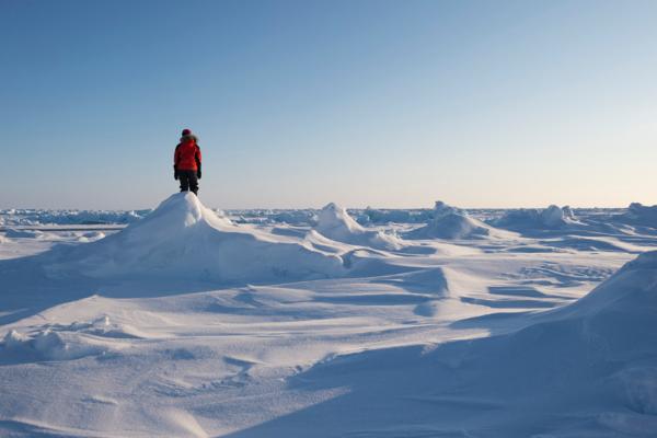 Стратегия развития Арктики будет создаваться совместно с общественностью