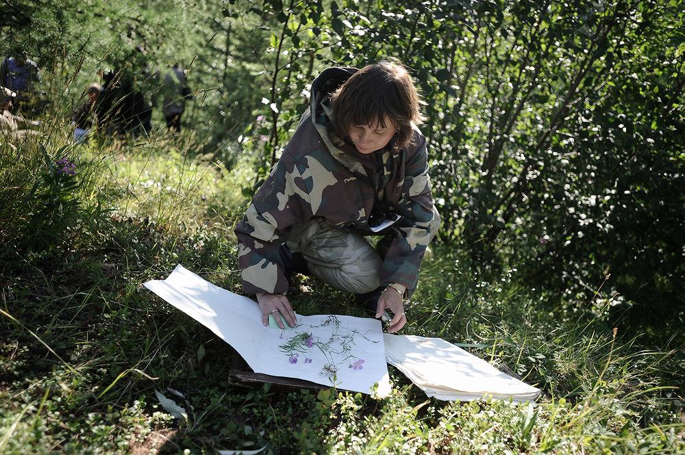 Ученые помогают «Норникелю» изучать экологическую обстановку