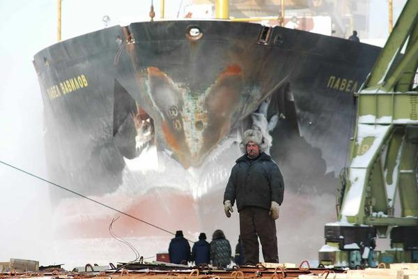 В Сибирском федеральном университете создан департамент изучения Арктики
