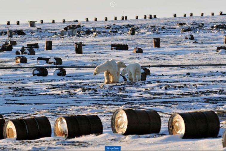 Из Арктики вывезено 176 тонн металлолома