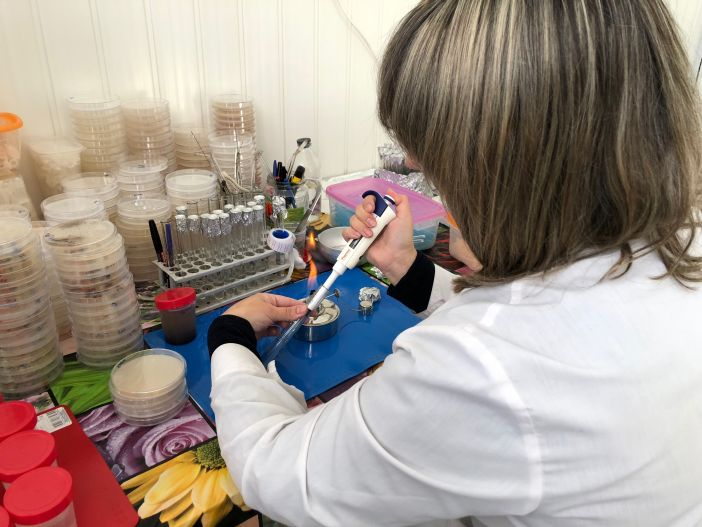 Специалисты Красноярского научного центра изучают в Норильске объекты, где размещаются отходы