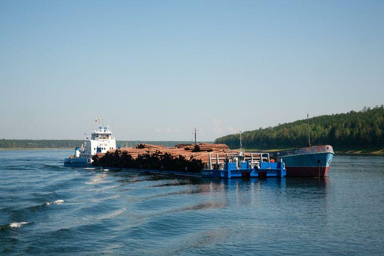 Енисейское пароходство перевезет около 50 тысяч тонн леса в плотах для «Норникеля»