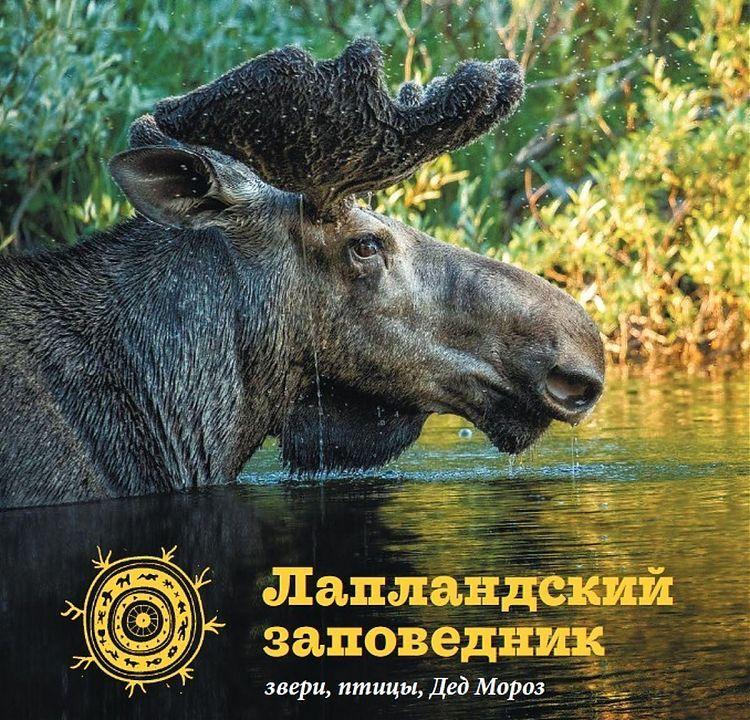 Слушатели «Медиашколы в Заполярье» создали путеводитель по Лапландскому заповеднику