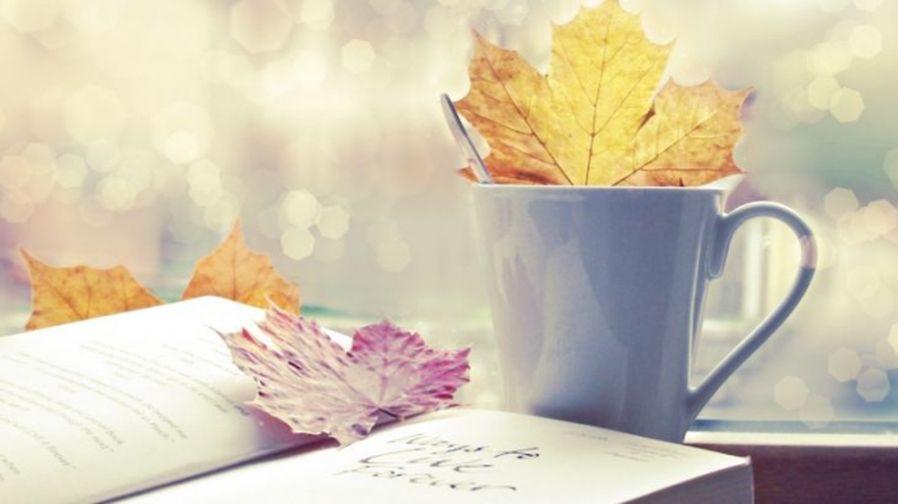 Фестиваль непрочитанных книг пройдет в Норильске
