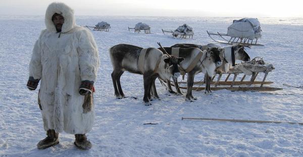 «Норникель» направил 144 миллиона рублей на поддержку коренных жителей Таймыра