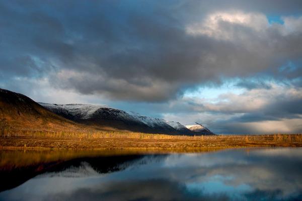 """""""Норникель"""" наблюдает за природой Кольского полуострова, помогает изучать ее и вести экопросвещение"""