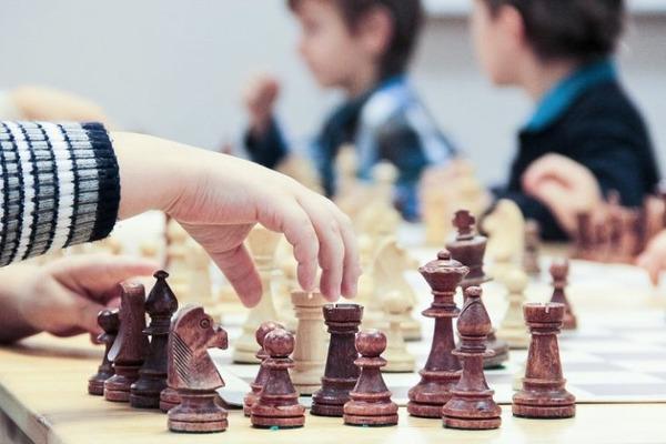 Бесплатные занятия по шахматам могут войти в образовательную программу школ