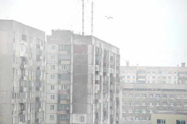 Дым от лесных пожаров в Сибири достиг юга Таймыра