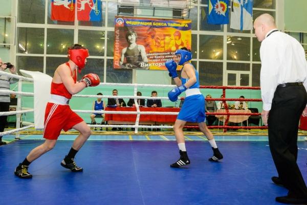 Турнир по боксу памяти Виктора Крауса соберет спортсменов Дудинки, Норильска, Красноярска и Туруханского района