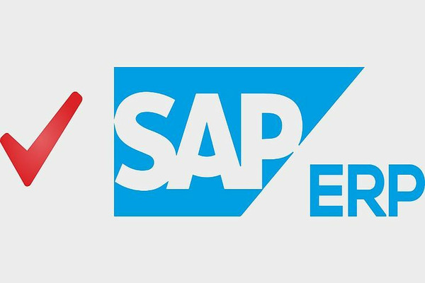 """В Заполярном филиале """"Норникеля"""" начали тестировать систему SAP ERP"""