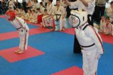 130 спортсменов стали участниками Чемпионата и Первенства Норильска по косики-карате