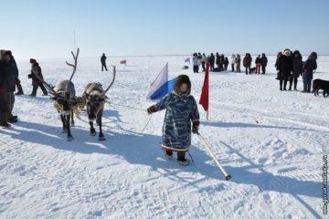 День оленевода отметят в таймырском поселке Потапово в апреле
