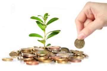 Более 500 жителей края получили финансовую помощь на открытие бизнеса