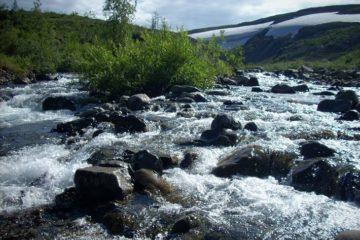 Жители края могут стать общественными экологическими инспекторами