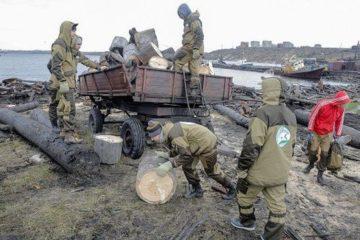 80 кубов строительного мусора и бревен собрала первая смена арктического субботника