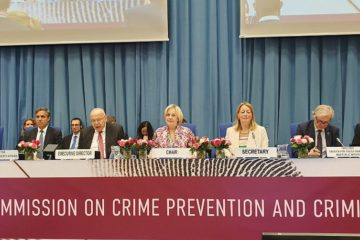 Научно-практические разработки «Норникеля» легли в основу резолюции ООН