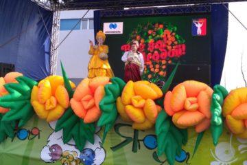 Фестиваль северной ягоды с размахом прошел в Норильске