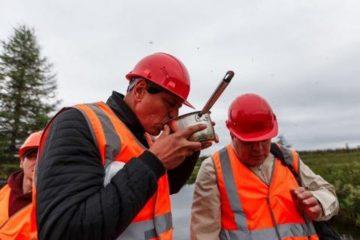 Таймырские власти оценили экологическую безопасность проекта освоения Томторского месторождения