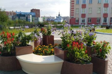 Кустарниковые скульптуры появятся в Пушкинском сквере в Норильске
