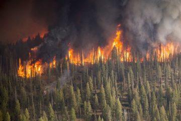 В выходные норильчане опять чувствовали едкий дым от лесных пожаров