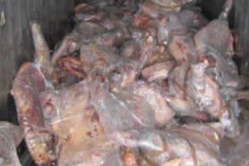 17 тонн говядины задержали в Дудинском морском порту
