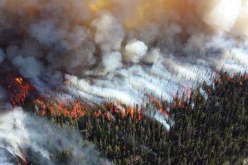 На севере Красноярского края прогнозируют дымку от лесных пожаров в Якутии