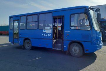 Из аэропорта дудинцев теперь отправляют домой на комфортабельных автобусах