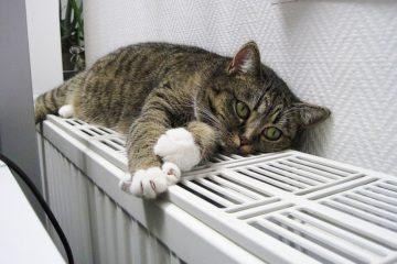 В жилых домах Норильска запустили отопление