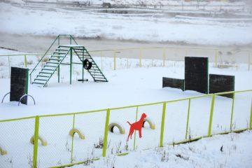 В Норильске строят вторую площадку для выгула собак
