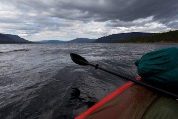 Таймырские ученые исследуют ихтиофауну местных водоемов