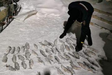 Жителя Дудинки задержали по подозрению в браконьерстве