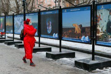 Москвичам снова открыли «Притяжение Арктики»