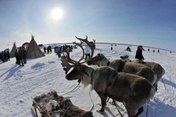 Что известно о самом северном полуострове Евразии?