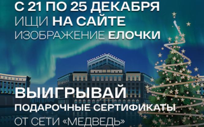 Информационный портал «Северный город» запустил новогодний квест