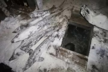 На Таймыре полицейские нашли в погребе у браконьера осетров на 800 тысяч