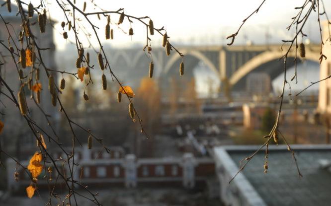 Красноярск может получить звание «Город трудовой доблести»