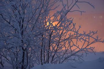 Морозы продержатся в Норильске до конца февраля