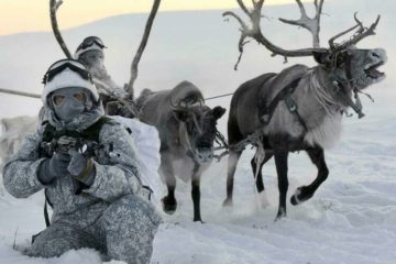 Пехотинцев Северного флота научат управлять оленьими и собачьими упряжками