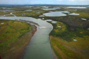 Владимир Путин поручил направить средства «Норникеля» на восстановление экологии в Норильске
