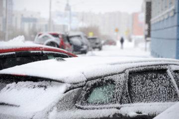 Таяние льдов Арктики может привести к очень снежным зимам