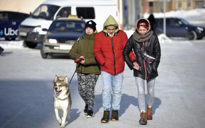 Рабочая неделя в Норильске будет теплой и ветреной