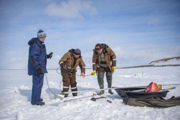 Первые итоги весеннего отбора проб на водоемах Таймыра ученые представят летом