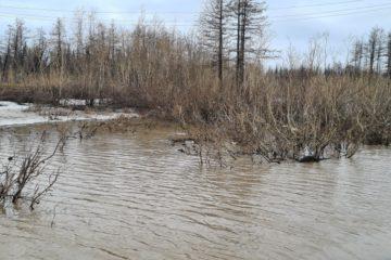 В Норильске река Талнахская вышла из берегов