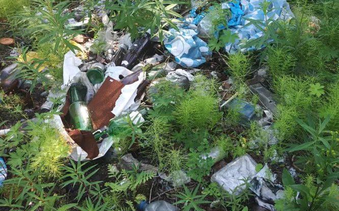 Неравнодушные норильчане очищают тундру от мусора