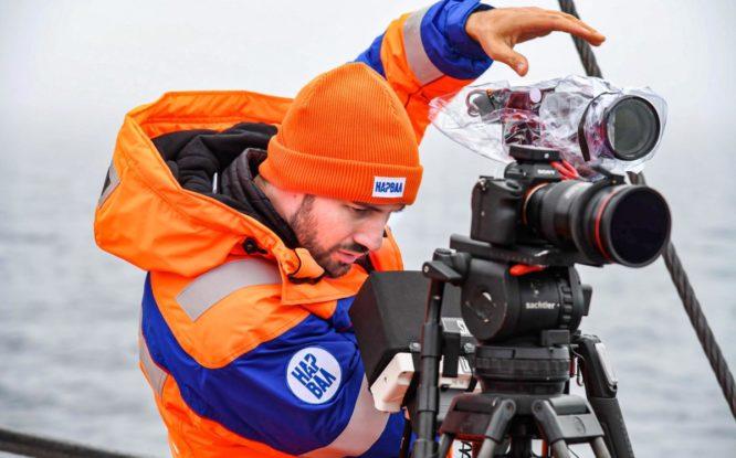 Ученые собрали ценные данные о «морских единорогах» в Арктике
