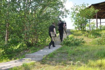 Парк арт-объектов создадут на экотропе лыжной базы «Оль-Гуль»
