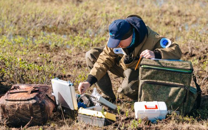 «Экотерра» продолжает работу над проектом рекультивации земель