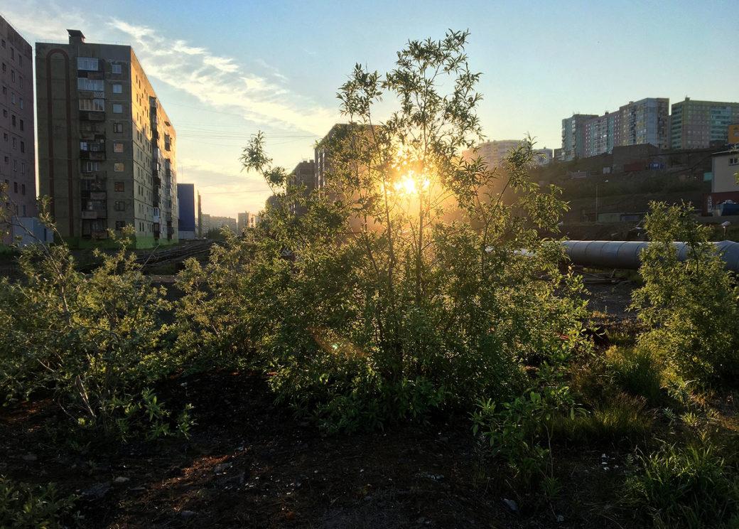 Осень близко: 25 июля в Норильске закончится полярный день