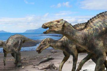 Впервые найдены доказательства зимовок и размножения в Арктике динозавров